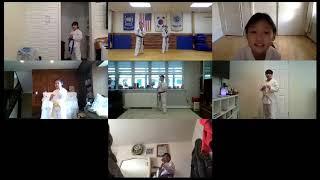 Online Taekwondo Beginners Class