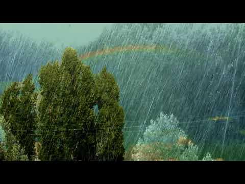 Стекает дождь