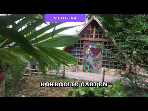 Ik slaap ergens anders | Reizen Ghana Vlog #44