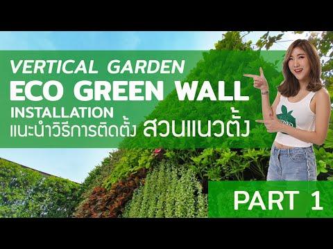 แนะนำการติดตั้งส่วนแนวตั้ง ECO GREEN WALL