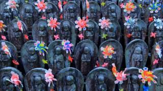 神奈川の写真スポット南足柄最乗寺~夕日の滝~富士山絶景スポット02