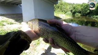 Рыбалка на дейме калининградская область