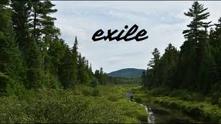 exile (by Taylor Swift feat. Bon Iver) - IzzyMAX Cover