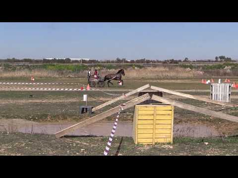 I Fase Cto Navarro Enganches Obstáculos 240319 Video 3