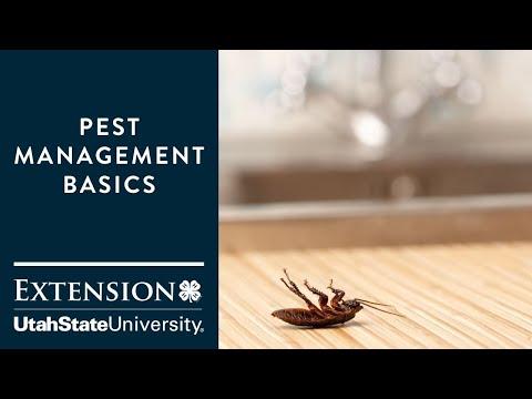 Pest Management Basics