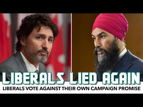 Trudeau's Liberals Vote Against Their Own Campaign Promise