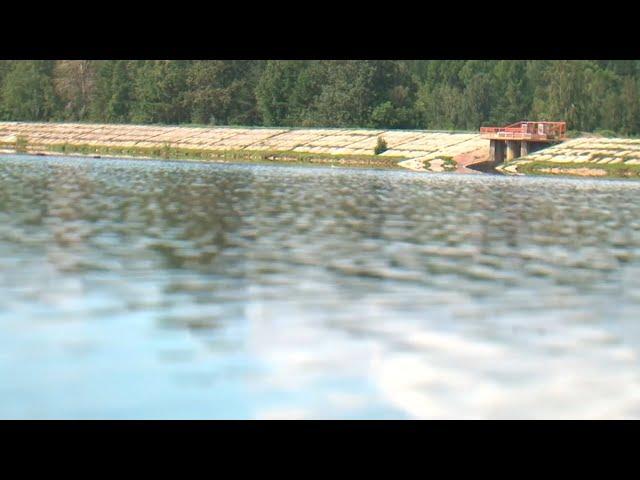 Еловский пруд опасен для здоровья