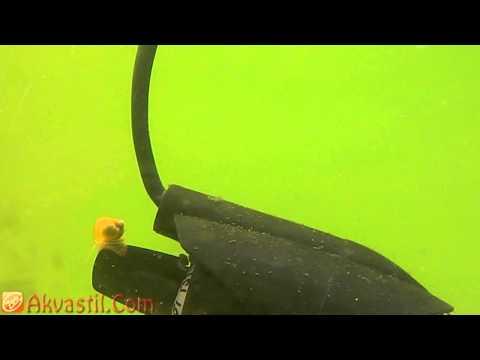 Анализ кала на выявление гельминтов