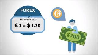 The Best Forex Trading Bot