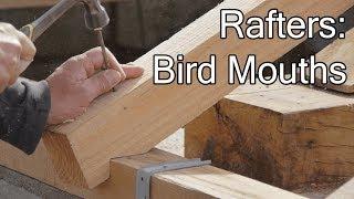 DIY ROOF:  RAFTER'S BIRD MOUTHS