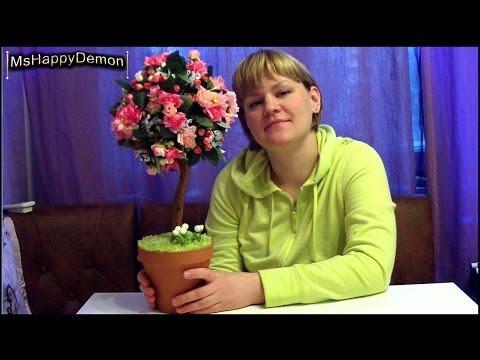 Цветок бабье счастье фото