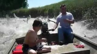 Смотреть онлайн Рыбы сами прыгают людям в лодку