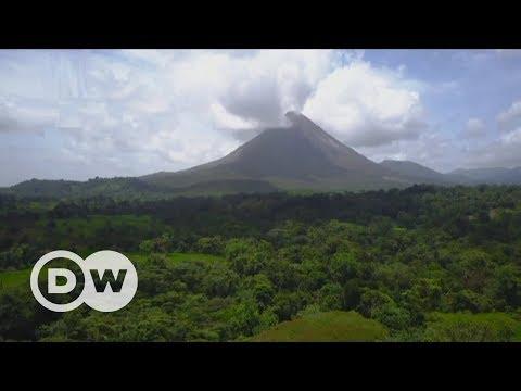 Klimafreundlicher Kaffeeanbau in Costa Rica | DW Deutsch
