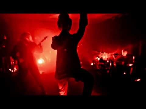 Ever Since - Bring Out The Gimp - Live - Official