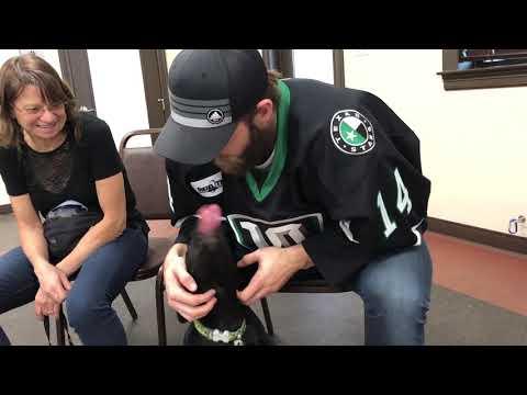 [TEX] Stars visit the Austin Dog Alliance