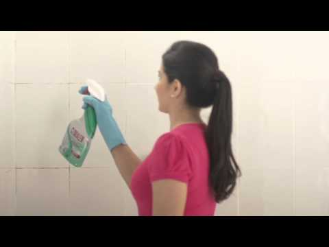 Try CLORALEN® Bathroom Cleaner with Bleach!