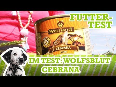 Hundefutter-Test Wolfsblut Cebrana (Nassfutter) Getreidefrei