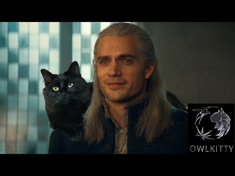 If Geralt had a Cat