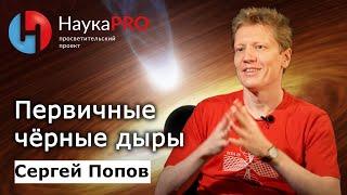 Сергей Попов - Первичные чёрные дыры