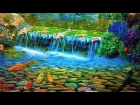 RELAXAR CONCENTRAR msica para relaxar para acalmar a mente e relaxar som da natureza