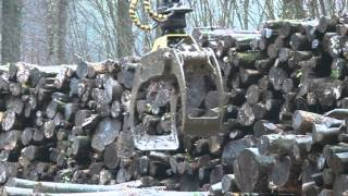 Le CFA Forestier de Saint Laurent