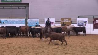 2016 Southern Cutting Futurity Open champions Sweet Baby Marie and Matt Miller –