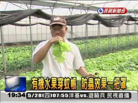 台糖有機蔬菜