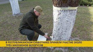 Участие в республиканском субботнике приняли около трёх миллионов белорусов