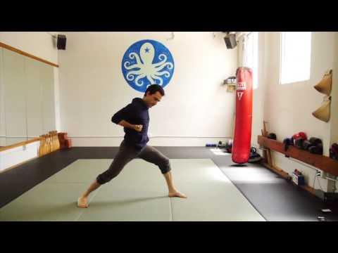 Martial arts yoga movements