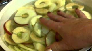 Dehydrated Apples Coated With Cinnamon Sugar