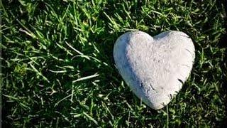 American Authors - Heart of Stone (lyrics)