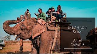 Gambar cover Meghauli Serai - A Taj Safari (Chitwan National Park) Nepal 2018 [Sarun Payal Sahas]