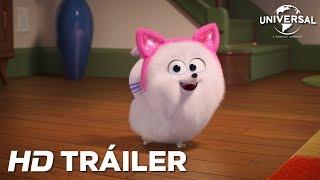Trailer of Mascotas 2 (2019)
