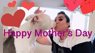 My pitbull Pretty boy he wanted give r kisses for the MOTHERS DAY ❤️❤️💋💋
