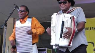 Nathan and the Zydeco Cha Chas Live, 2016, at the 10th Annual Louisiana Cajun-Zydeco Festival