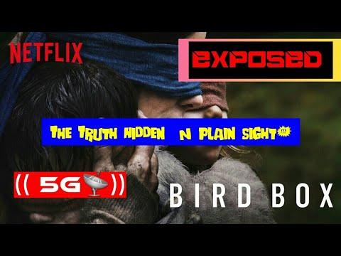 "Alex Jones EXPOSES REAL SECRETS Of ""BIRD BOX"" Movie!!"