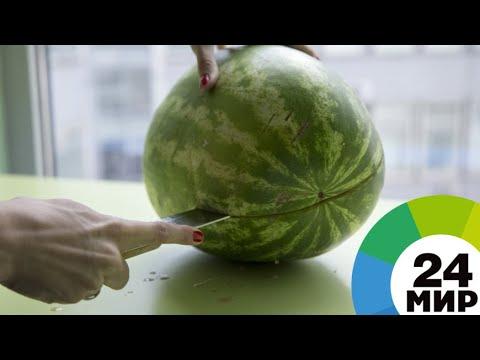 Опасная ягода: кому нельзя есть арбузы
