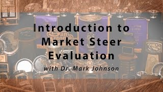 Introduction to Market Steer Evaluation