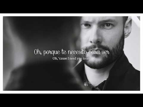 CALUM SCOTT - YOU ARE THE REASON  LETRA EN INGLÉS Y ESPAÑOL