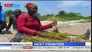 The Next Frontier: Rice farmers soon to grow hybrid rice developed and bred in Kenya