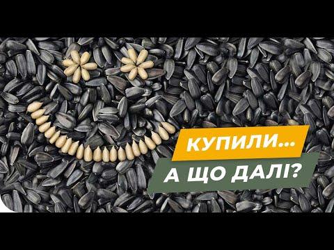 Что делать после покупки семян? Пошаговая инструкция