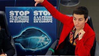Le Parlement européen vote pour l'interdiction de la pêche électrique