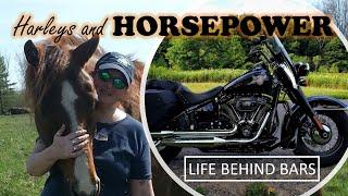 Harleys & Horsepower