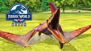 Jurassic World Alive Pterovexus - Hài Trấn Thành - Xem hài
