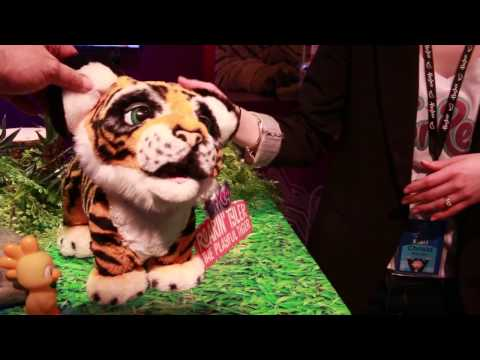 Man Tamed By Toy Tiger