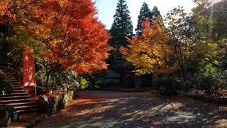 五家荘の紅葉 2
