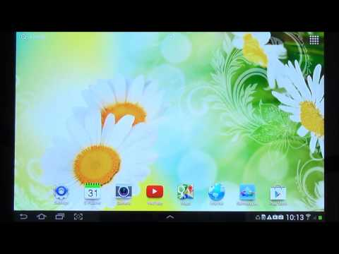 Video of Daisies Live Wallpaper