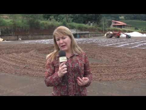 De mecânico a cafeicultor - A história de Nilo Oliveira