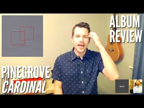 Does Pinegrove's Alt-Country 'Cardinal' Have Any Direction? — Album Review