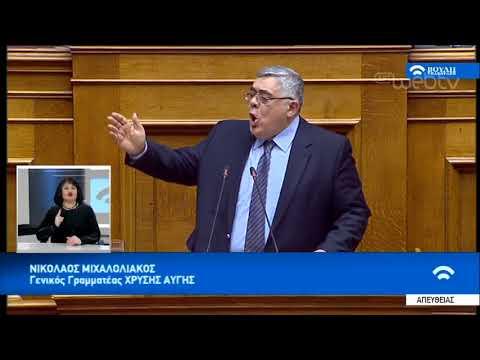 Ν. Μιχαλολιάκος: Δεν δίνουμε ψήφο εμπιστοσύνης στην κυβέρνηση   16/01/19   ΕΡΤ